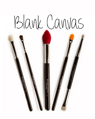 blank canvas cosmetics brushes