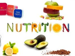 healthy lifestyle tips weight loss nutrition
