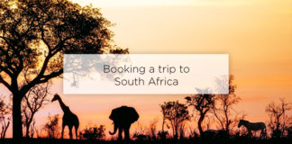 booking a trip to south africa